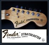 Fender stratocaster decal al agua - foto