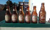 Botellas Serigrafiadas - foto