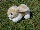 Peluche Conejo - foto