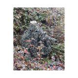 Red de camuflaje para fotografos - foto