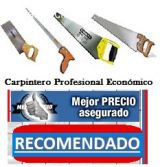 Carpinteros economicos - foto