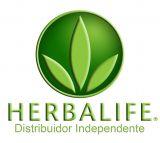 Distribuidor independiente herbalife - foto