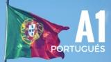 CURSO PORTUGUÉS INTENSIVO A1 - foto