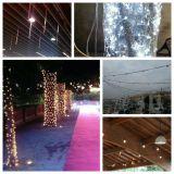 iluminaciones bodas congresos navidades - foto