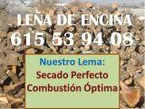 Leña de Encina barata - foto