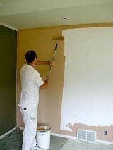 Pintor - Amplia experiencia seriedad - foto