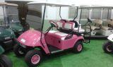 buggy empresas movilidad buggy golf - foto