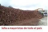 LEÑA OLIVO A MAYORISTAS Y GRANDES CONSUM - foto