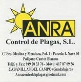 empresa de control de plagas - foto