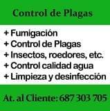 Fumigación en Sevilla. Control plagas - foto
