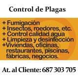 Fumigación en Sevilla. Control de Plagas - foto