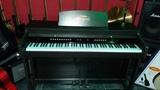 Piano Steyson Concert ll - foto