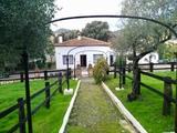 Casa Rural en la Sierra de Aracena - foto