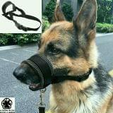 BOZAL ANTITIRONES PERRO segunda mano  Accesorios productos perros (ALICANTE)