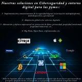 Serveis de ciberseguretat a empreses - foto