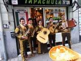 Mariachis vizcaya / 685357092 - foto
