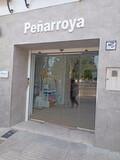 Puertas de Garaje, persinas de seguridad - foto