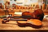 Servicio de lutheria luthier violin - foto