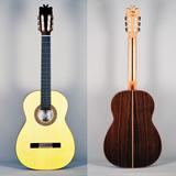 Guitarra Flamenca Concierto,Miguel Mateo - foto