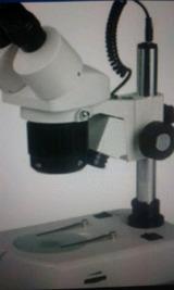 Estereo microscopio Binoc.MOD .xtd-210c - foto