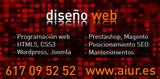DISEÑADOR WEB PROFESIONAL - foto