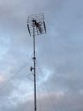 Antenista y electricista tecnico - foto