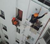 Servicios verticales - foto