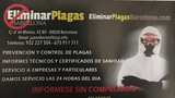 Sin plagas barcelona- Desinfeccion - foto