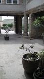 Casa rural B.cinca,Monegros y Somontano, - foto
