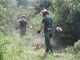 jardinero autonomo ! - foto