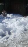 cañón de espuma - foto