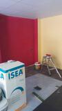 Alisado de gotele y pintura(autonomo) - foto