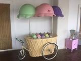 alquiler de carritos de helados - foto