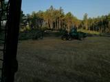 Empresa forestal - foto