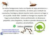 Fumigaciónes de cucarachas , hormigas... - foto