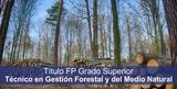 GESTIÓN FORESTAL Y DEL MEDIO NATURAL - foto