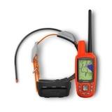 GPS Garmin Atemos 50 + Collar K5 + Mapa - foto