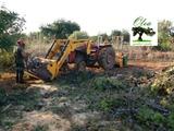 Trabajos forestales y agrícolas - foto