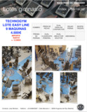 Lote gimnasio easy line TECHNOGYM - foto
