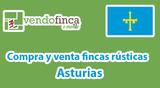 COMPRA Y VENTA FINCAS RÚSTICAS ASTURIAS - foto