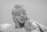 sesión de fotos para recién nacido - foto