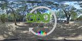 Fotografia esferica 360° visitas virtual - foto
