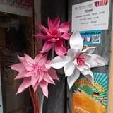 Flores grandes decorativas - foto