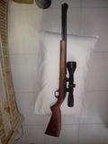 Rifle del 22 - foto