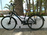 bicicleta para adultos - foto