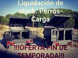 Remolques perros liquidaciÓn stock!!! - foto