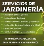 Jardineria berlanga facebook - foto