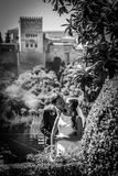 su boda artistica desde 590 eur, - foto