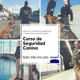 CURSO DE SEGURIDAD CANINA - foto