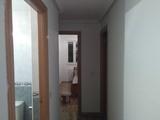 Pinte su piso por 300 euros, temple. - foto